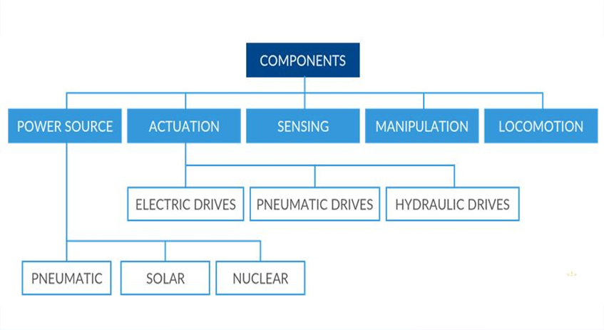 What are the main components of a robot?